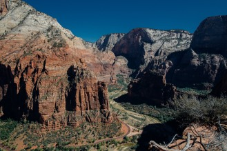 Zion national park, from (almost) Angel's Landing